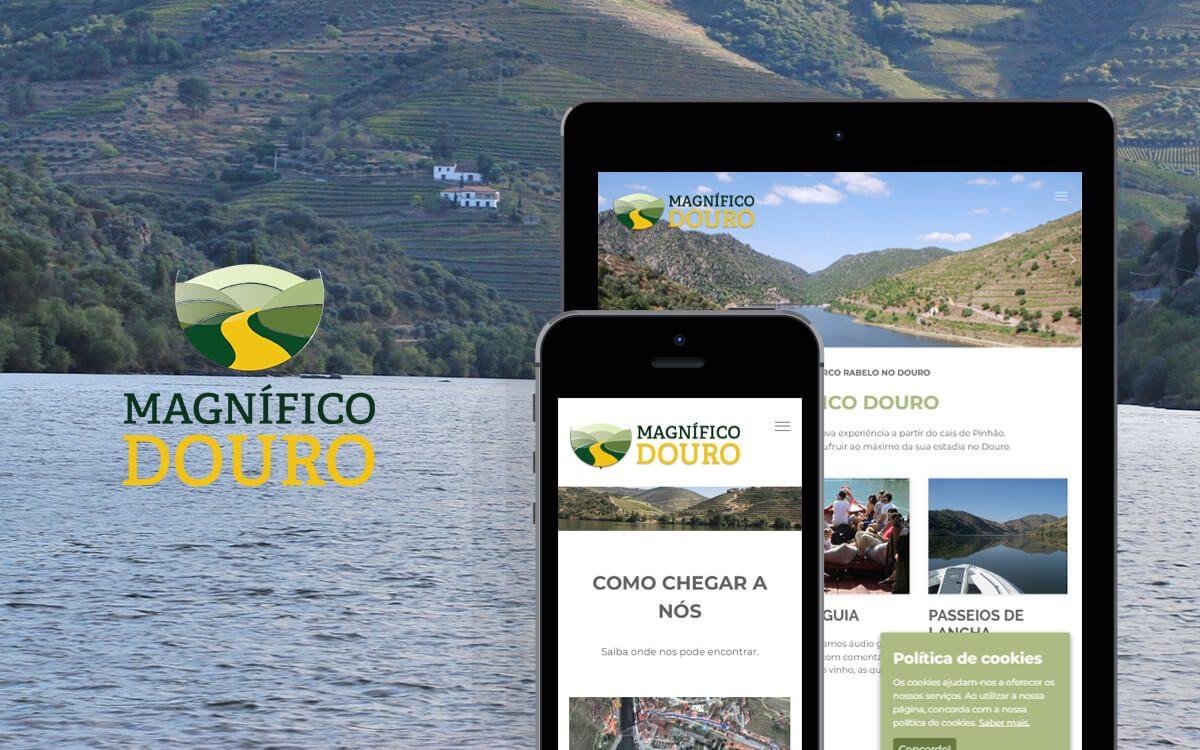 Passeios de Barco Rabelo no Douro - Pinhão - Magnífico Douro